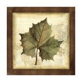 Rustic Leaves I - No Crackle Posters by  Vision Studio
