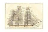 Nautilus V Prints