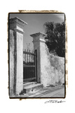 Old Bermuda Gate II Premium Giclee Print by Laura Denardo