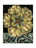 Small Paneled Rosette on Black I Print by Jennifer Goldberger