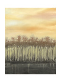 Dusk in Autumn Prints by Jennifer Goldberger