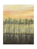 Dusk in Summer Giclee Print by Jennifer Goldberger
