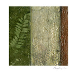 Earthen Textures II Prints by Beverly Crawford