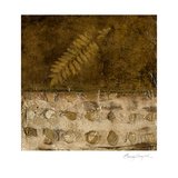 Earthen Textures IX Posters by Beverly Crawford