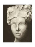 Roman Relic II Print by Ethan Harper