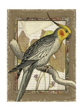 Tropical Bird Composition IV Premium Giclee Print by Kate Ward Thacker