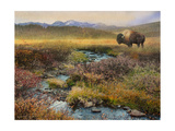 Bison and Creek Premium Giclee Print by Chris Vest