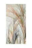 Fractal Grass II Premium Giclee Print by James Burghardt