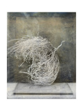 Desert Form I Art par Elena Ray
