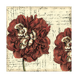 Printed Vintage Composition I Premium Giclee Print by  Vision Studio