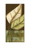 Small Palm Leaf Arabesque II Giclée-Premiumdruck von Erica J. Vess