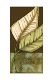 Small Palm Leaf Arabesque II Prints by Erica J. Vess