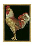 Single Rooster II Reproduction procédé giclée Premium