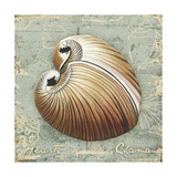 Weathered Shells IV Premium Giclee Print by Kate Ward Thacker