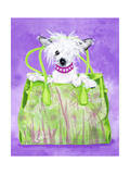 Chinese Crested Handbag Premium Giclee Print by Carol Dillon
