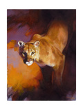 Out of the Shadows Premium Giclee Print by Julie Chapman