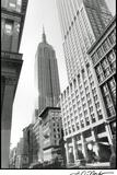 Empire State Building III Poster par Laura Denardo