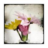 Summer Memory II Premium Giclee Print by Ingrid Blixt