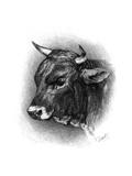 Antique Cattle IV Premium Giclee Print
