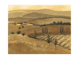 Golden Tuscany Afternoon II Poster