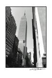 Empire State Building II Prints by Laura Denardo