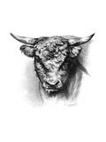 Antique Cattle III Premium Giclee Print