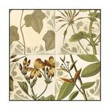 Small Botanical Quadrant III Premium Giclee Print by  Vision Studio