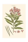 Small Blushing Pink Florals III Prints by John Miller