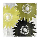 Bloomer Squares I Prints by James Burghardt