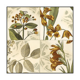 Small Botanical Quadrant IV Premium Giclee Print by  Vision Studio