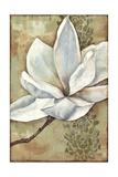 Magnolia Majesty II Art by Jennifer Goldberger