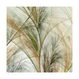 Fractal Grass IV Prints by James Burghardt
