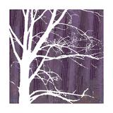 Small Aurora Silhouette IV Premium Giclee Print by Alicia Ludwig