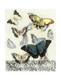 Butterfly Habitat II Art by Jennifer Goldberger