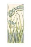 Small Gossamer Dragonflies I Premium Giclee Print by Chariklia Zarris