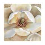 Magnolia Masterpiece II Premium Giclee Print by Louise Montillio