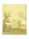 Misty IV Premium Giclee Print by Ken Hurd