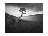 Outcrop Prints by Martin Henson