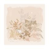 World Flora I Premium Giclee Print by Ken Hurd