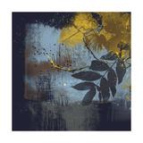 Midnight I Premium Giclee Print by Ken Hurd