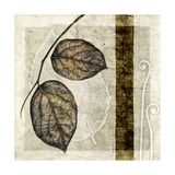 Fall Leaves II Posters by Christine Zalewski