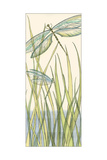 Small Gossamer Dragonflies II Premium Giclee Print by Chariklia Zarris