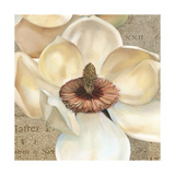 Magnolia Masterpiece I Posters by Louise Montillio
