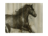 Dynamic Stallion I Prints by Ethan Harper