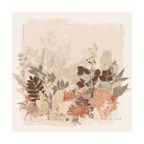 World Flora III Premium Giclee Print by Ken Hurd