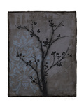 Branch in Silhouette IV Stretched Canvas Print by Jennifer Goldberger