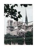 Monumental View X Prints by Carolyn Longley