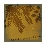 Waxing Crescent I Premium Giclee Print by Ken Hurd