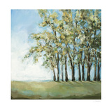 Tree in Summer Plakater af Christina Long