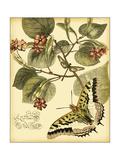 Mini Whimsical Butterflies I Kunstdrucke von  Vision Studio